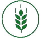 Aménagements hydro-agricoles et développement rural