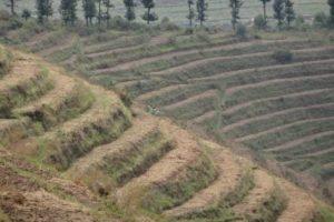 Étude  du schéma directeur d'aménagement du bassin versant de la rivière de la Ruvubu de superficie de 850 km²