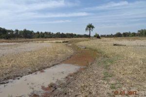 Etudes APS,APD,EIES, DCE pour la réhabilitation / l'aménagement  de 5000 ha de vallées rizicoles dans la région de Kolda