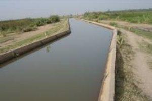 Étude APD/DCE et contrôle des travaux de réhabilitation du périmètre irrigué Djamballa de superficie de 700 ha