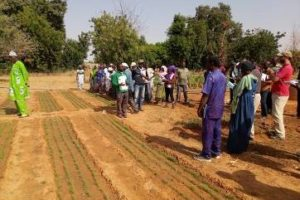 Prestation d'Appui à la Maitrise d'Ouvrage (PAMO) dans la région du Nord pour le compte du projet Neer-Tamba